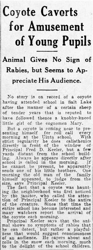 Jan 30, 1916, Salt Lake Tribune